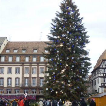 établissement Bellevue voyage Strasbourg 2011/2012 - 3